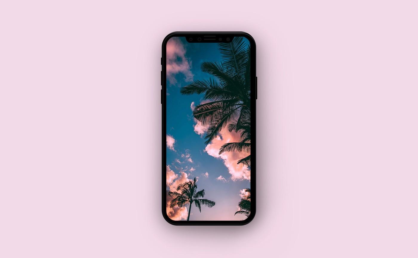 Обои для iPhone - пальмы