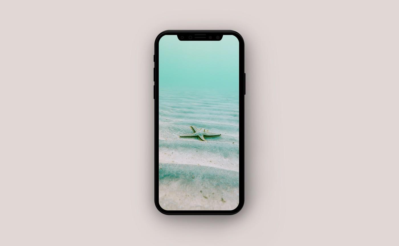 Обои для iPhone - морская звезда