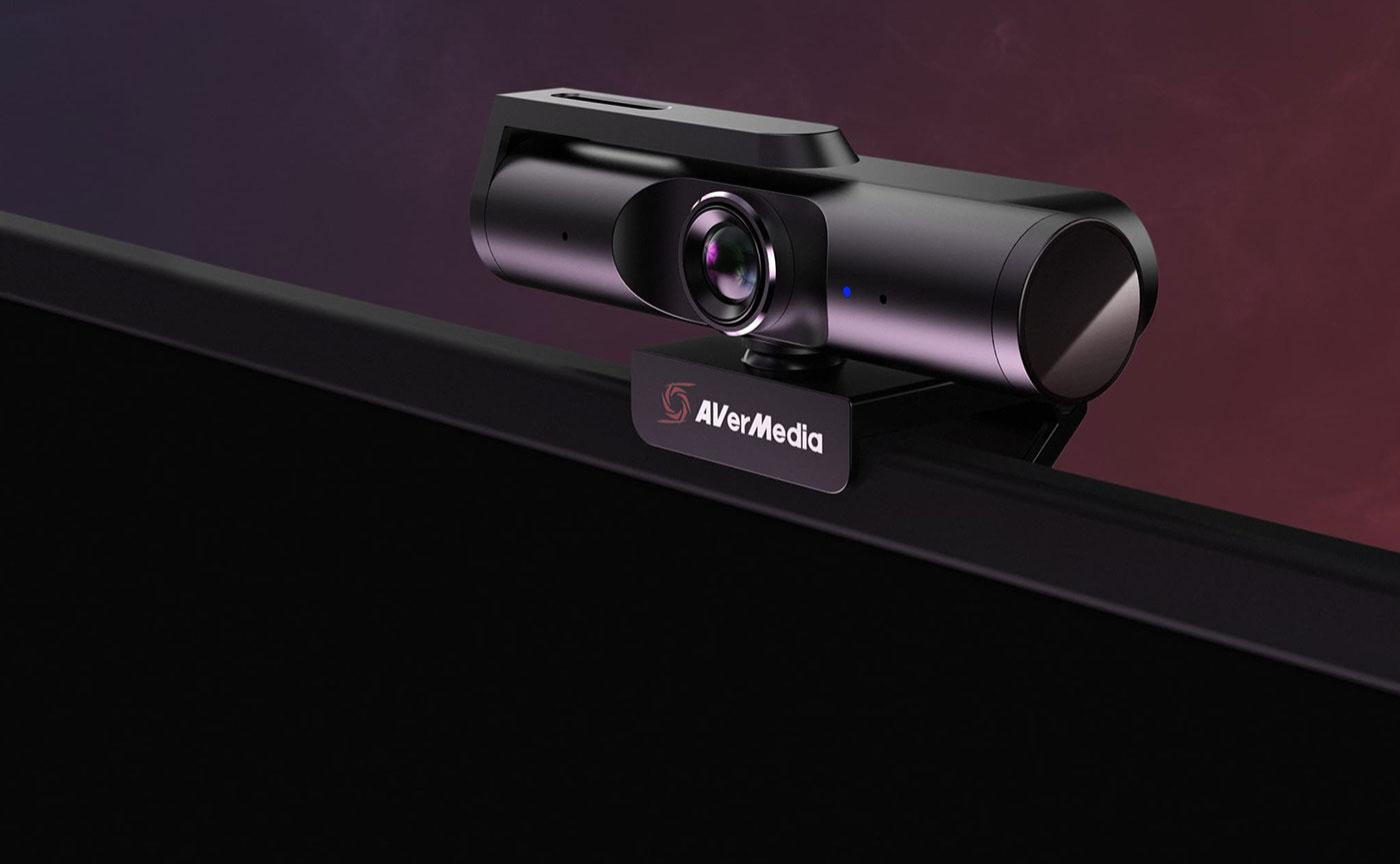 AverMedia Live Streamer CAM 313