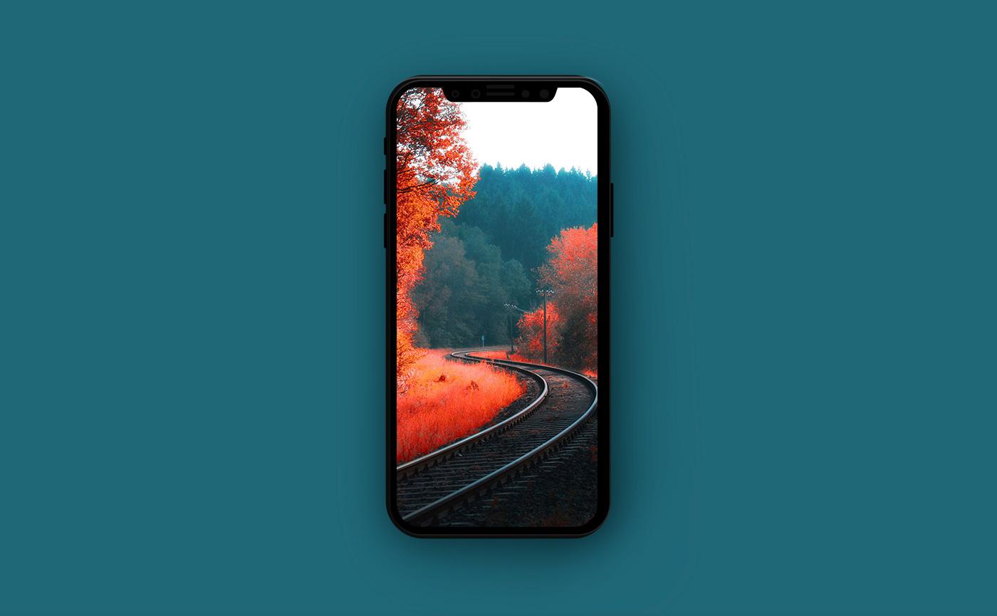 Осенние обои для iPhone - железная дорога в осеннем лесу