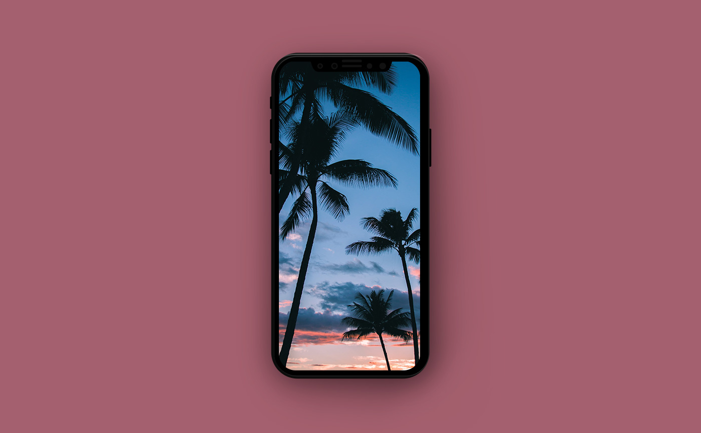 Туристические обои для iPhone - пляж под пальмами