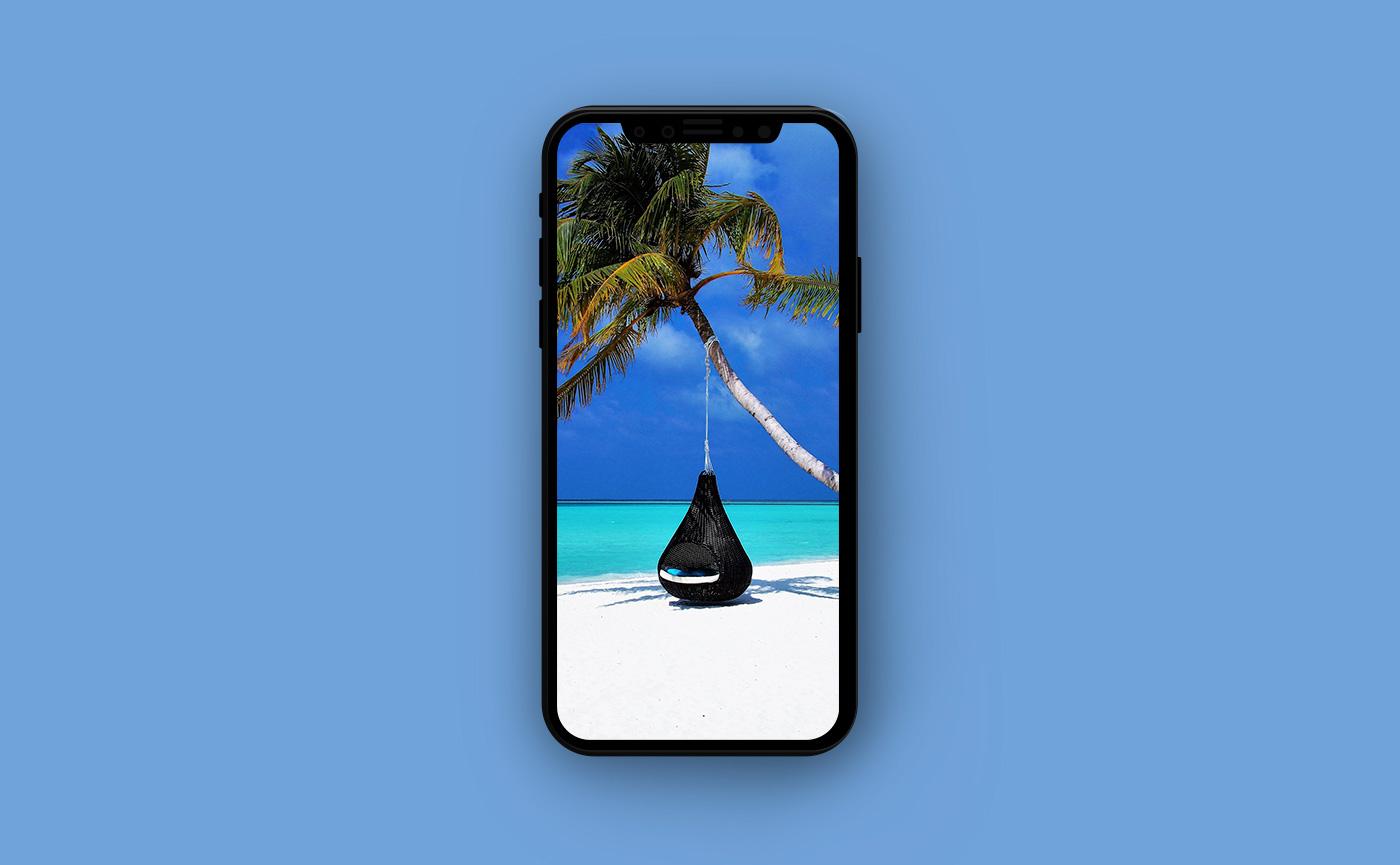 Обои для iPhone Мальдивы - пальма