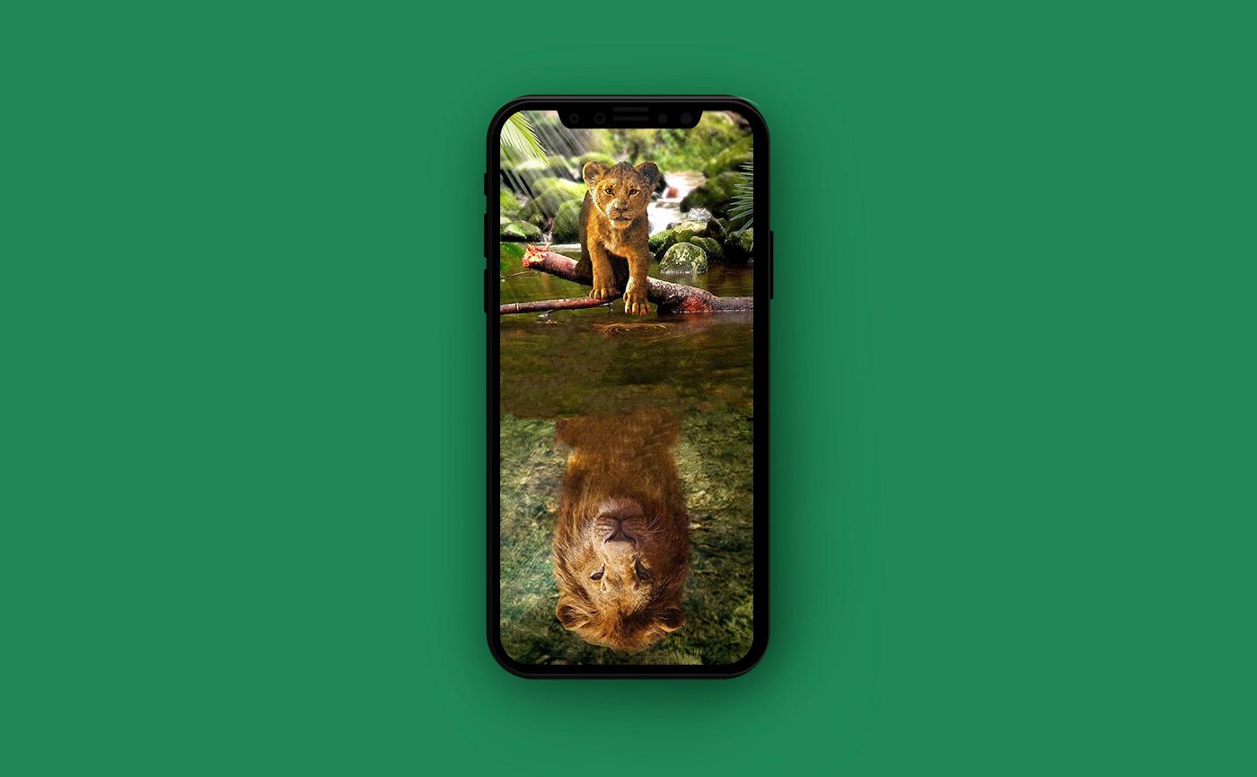 Яркие обои для iPhone - симба