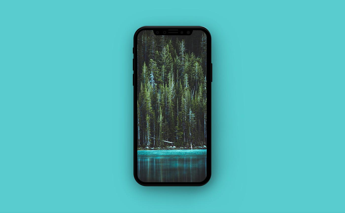 Обои для iPhone - берег озера