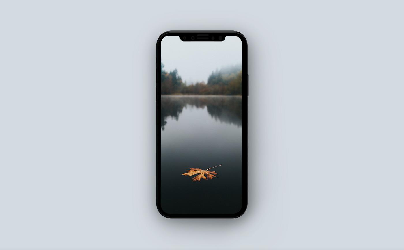 Осенние обои для iPhone - озеро в лесу