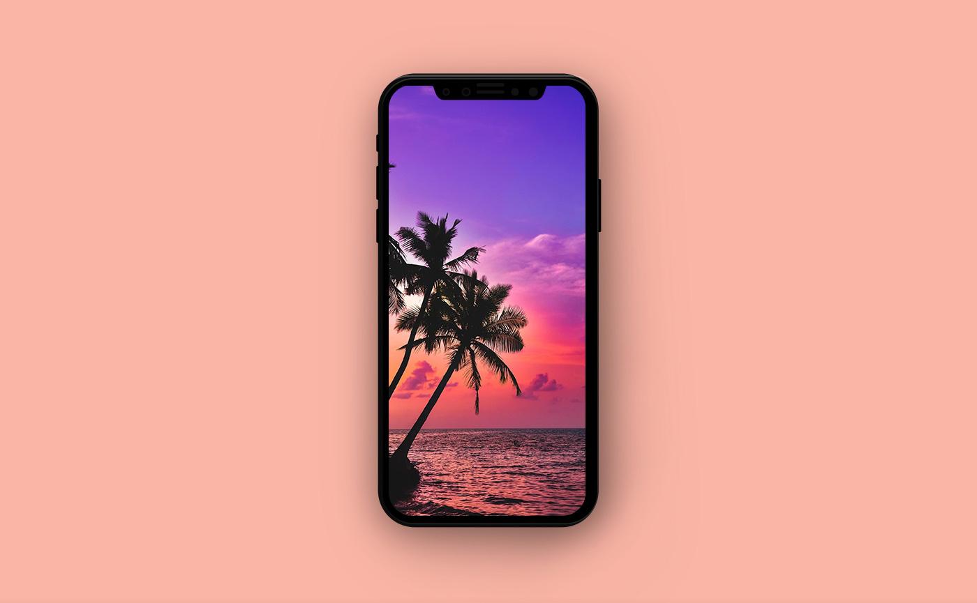 Обои для iPhone - пальмы на берегу