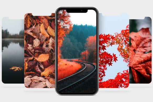 #11 Обои для твоего iPhone